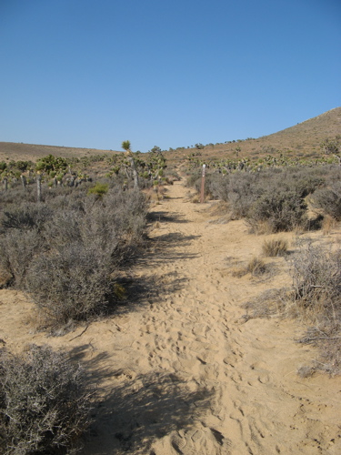 The dry and dusty trail